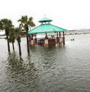 Water creeps up the columns of a bar at Sneaky Pete's. (Photo: Travis Tipps)