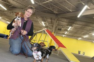 Patricia Debarros-Kari, facility director of Dog Quest at 1565 W. Main St. in Lewisville, holds Tyke while surrounded by Claudia, Geoffrey and Henry. (Photo by Dawn Cobb)