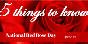 5 things to know rose