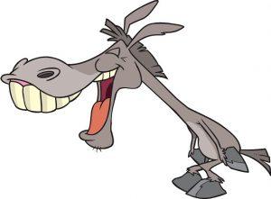 c. stroup - smiling mule