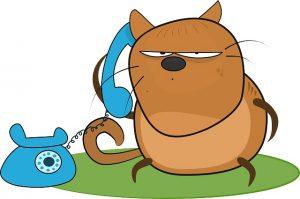 cat-angry-cartoon-telephone